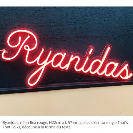 Enseigne Néon LED Rouge Logo et plexiglas transparent découpe à la forme, Ryanidas